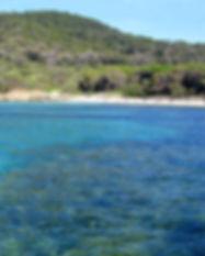 cip_plongee_lavandou_port_cros_snorkelin