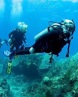 cip-plongeur-lavandou-mediterranee-var-f