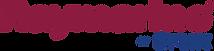 118-1181976_raymarine-logo-png.png