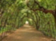 Boboli Garden.jpg
