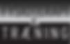 Vejle Fysioterapi og Træning Logo