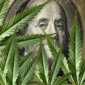 Investing in Cannabis Stock: For Beginners 8/4