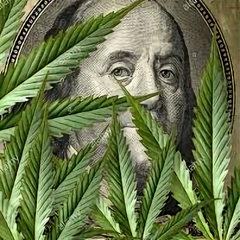 Investing in Cannabis Stock: For Beginners 8/28
