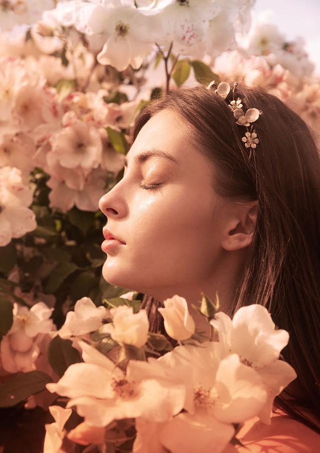 Rosa Rosae by Yvonne Vionnet