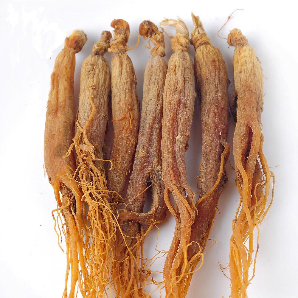 Red Korean Ginseng (panax Ginseng) | Chinese Ginseng | Asian Ginseng