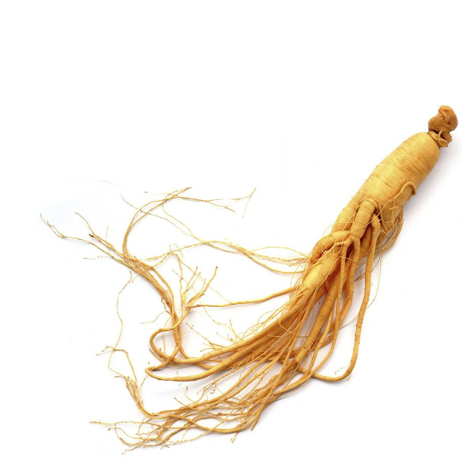 Buy Red Korean Ginseng Roots