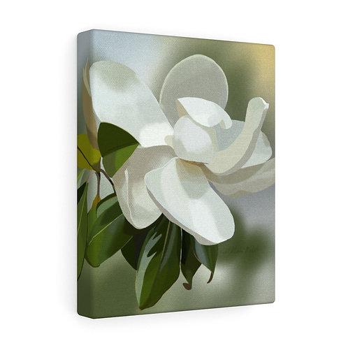 Magnolia Canvas Gallery Wraps
