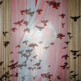 Lluvia de alas (Rain of Wings)
