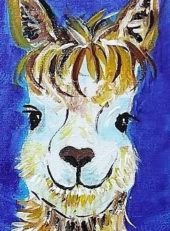 Alpaca Darling