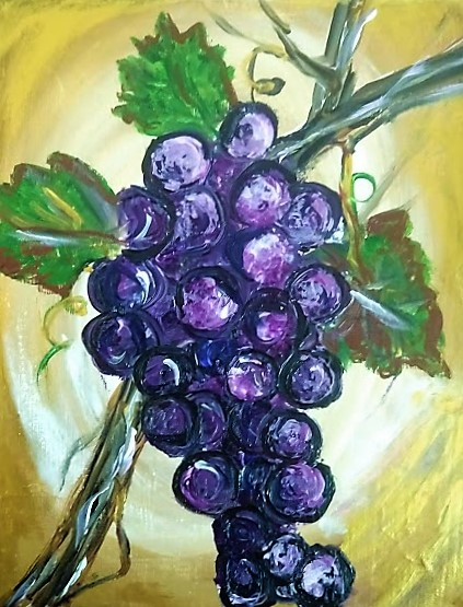 Grapes & Vines