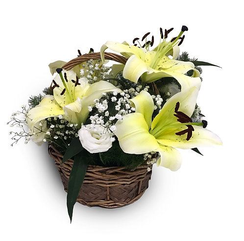 Elegant Lilies