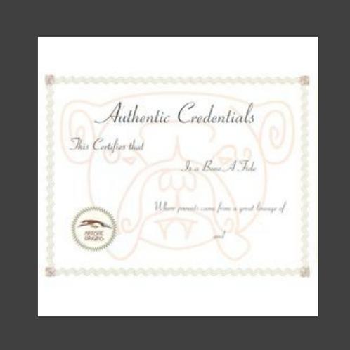 Authentic Credentials Certificate