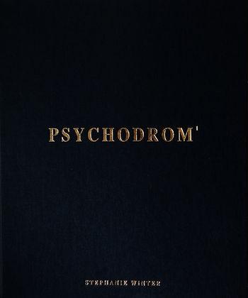 Psychodrom buch.jpg