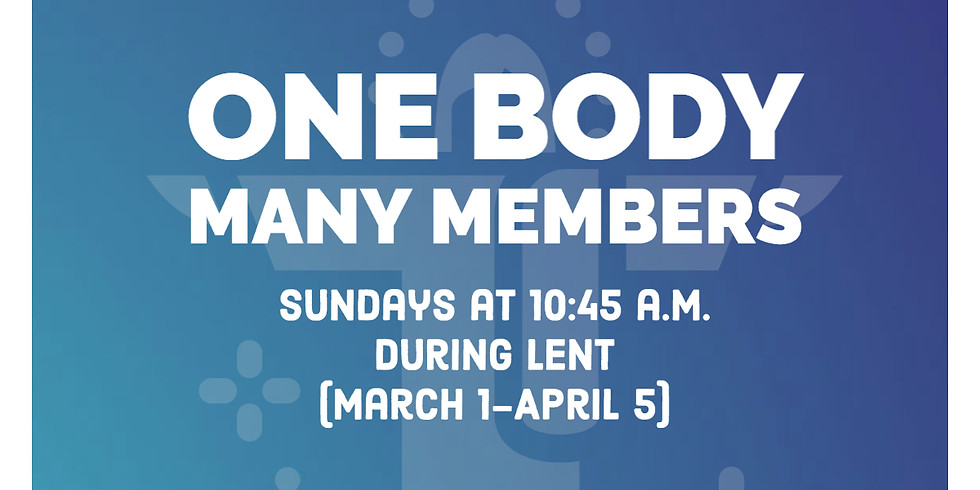 One Body, Many Members - Session 2: Self Awareness