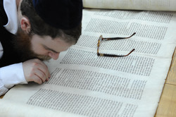 Photo 89 - Lenin Scientific Library - R. Koves Examining Lettering on Torah - YL