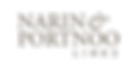 narin-portnoo-logo-c-300x154.png