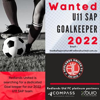 Wanted - U11 SAP Goalkeeper