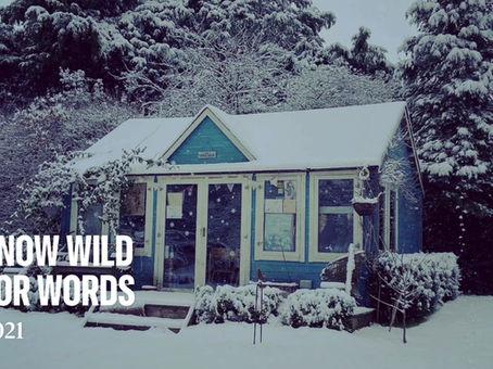 January 2021 Snow!