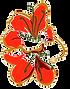 logo8041862_lg.png