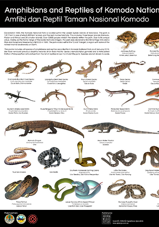 Herps of Komodo Poster.PNG