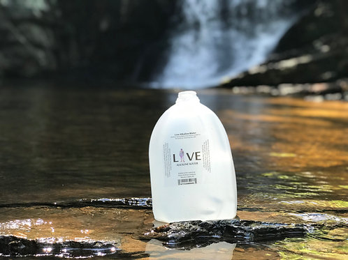 Live Alkaline Gallons (Case of 4)(2 Case Minimum)