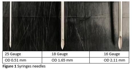 P1 Figure 1 Syringles needles.png