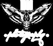 Benji North Mini Logo Redesign 3.png