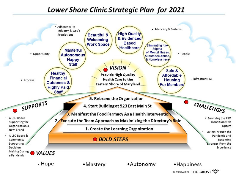 LSCGG Strategic Plan 2021 (1).jpg