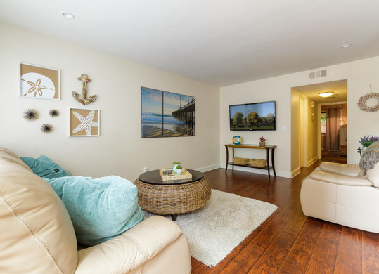 Ventura Staged Condo - Living Room