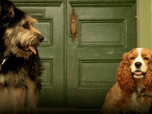 Crítica | Nostalgia bate forte no remake de 'A Dama e o Vagabundo'
