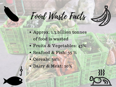 Global Food Waste Facts & What You Can Do