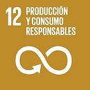 SDG12 produccion y consumo responsables.