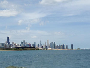 chicago kiws.jpeg