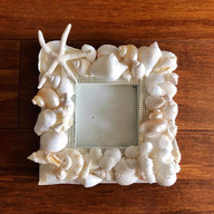 Creamy white dazzlement shell frame