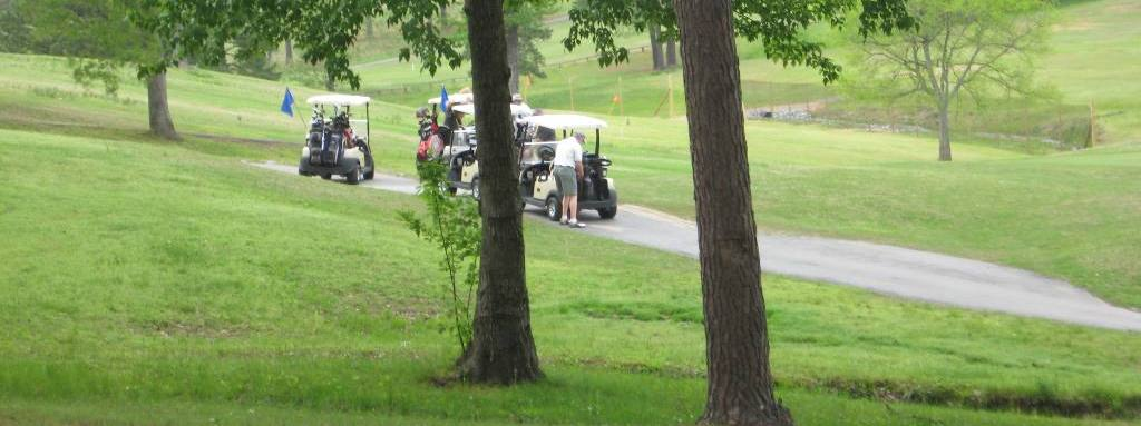 Golfing at DeGray Lake Resort