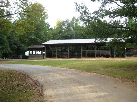 Horse Stables