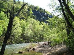 Trail at Kyle's Landing