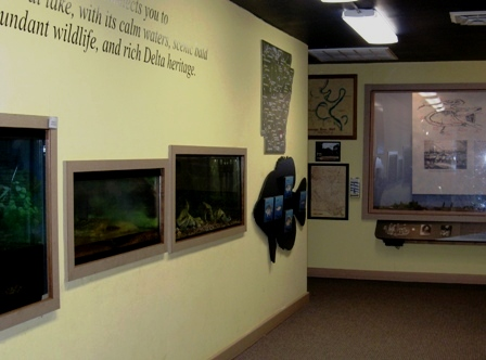 Visitor Center Displays