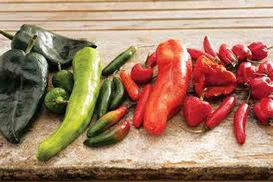 Shredded fresh chillis 230ml