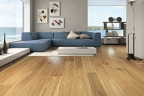 Spotted Gum 190