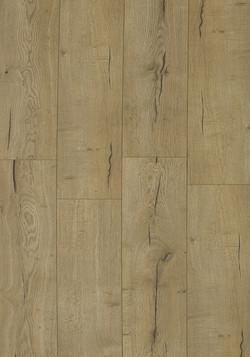 Oak Fremont