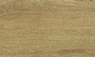 Sahara Dune.jpg
