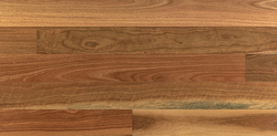 Spotted Gum 125