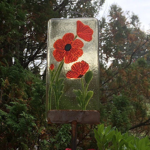 Poppies on amber