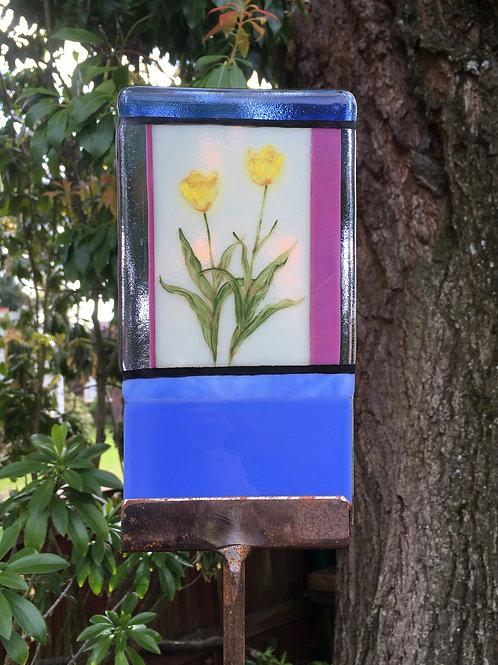 Framed Tulips
