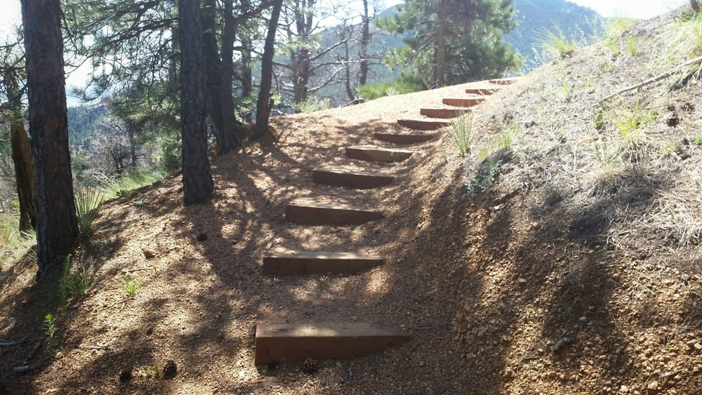 The path up Mount Muscoco sometimes felt like Lord of the Rings to me!