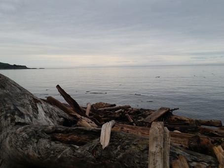 O Canada: Days 13-15