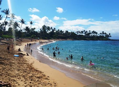 Real Hawaii