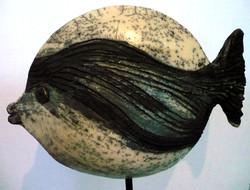 Raku round fish