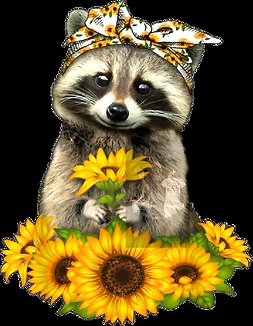 Sunflower design only